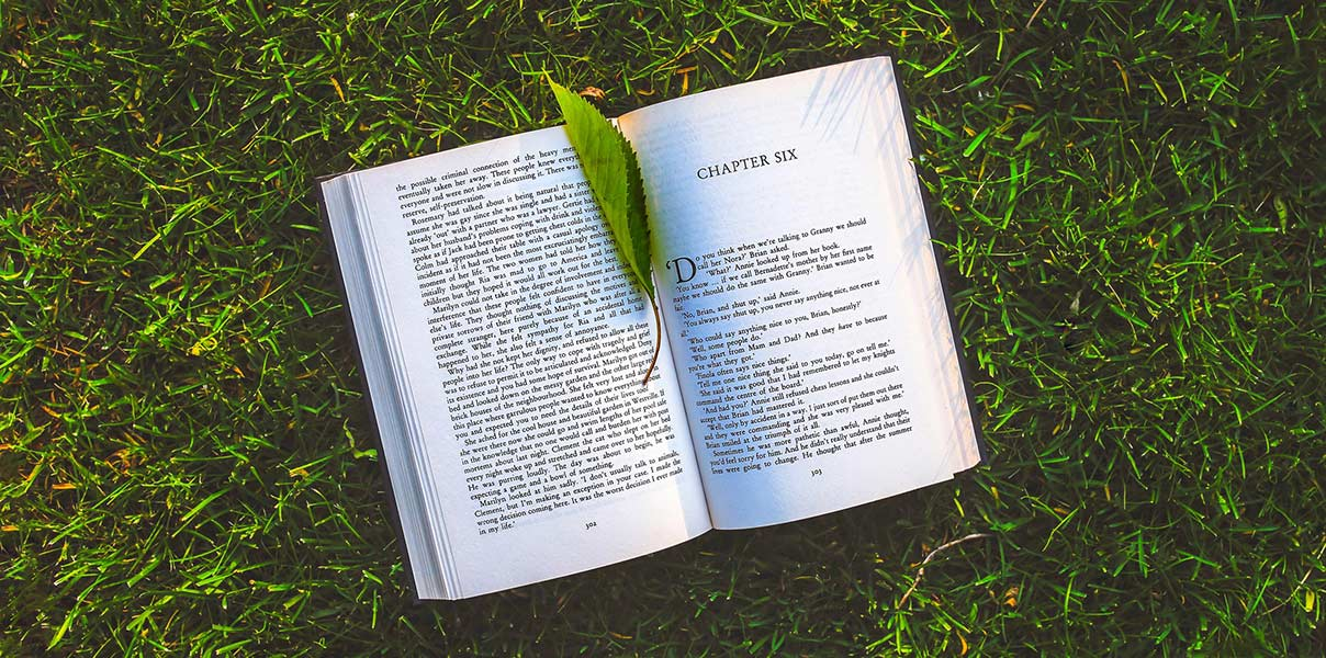 An image of a book lying open in the grass.