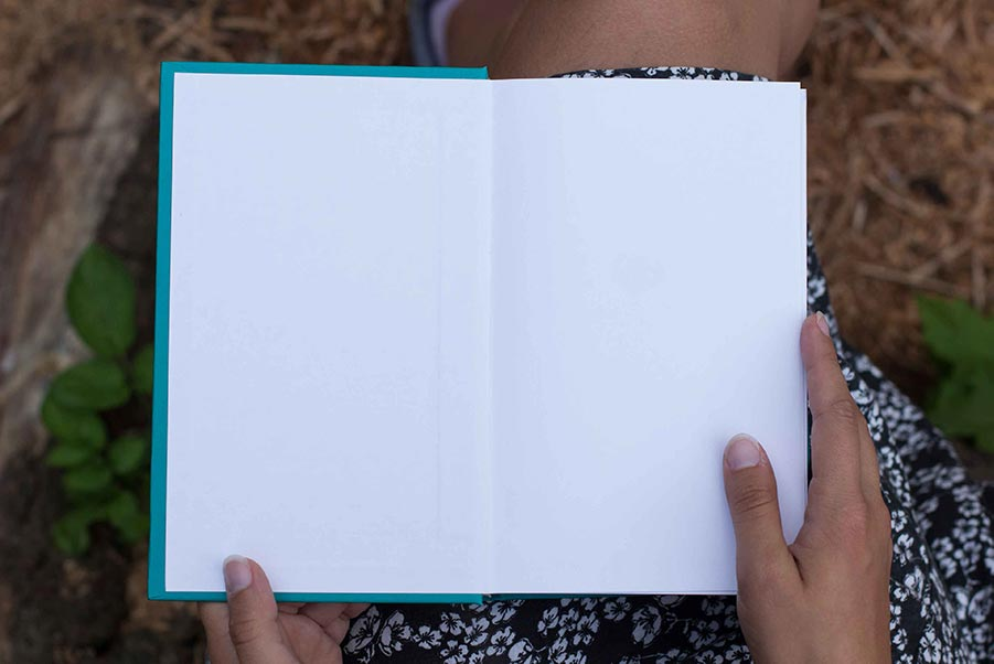 The inside cover of a book.